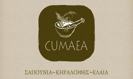 Κατασκευή ιστοσελίδων - Cumaea Brand Design – Logo