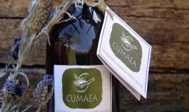 Κατασκευή ιστοσελίδων - Cumaea Brand Design – Bottle Packaging