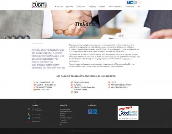 cubit-Website-4