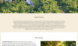 Κατασκευή ιστοσελίδων - limnos-Website-2