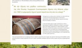 Κατασκευή ιστοσελίδων - limnos-Website-4