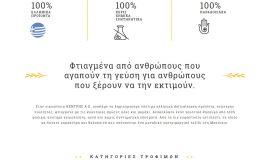 Κατασκευή ιστοσελίδων - strofilia-Website-1
