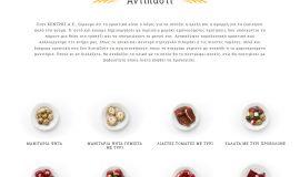 Κατασκευή ιστοσελίδων - strofilia-Website-3