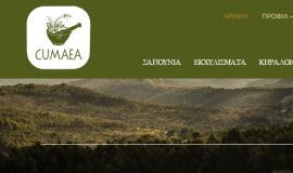 Κατασκευή ιστοσελίδων - Cumaea-website-0