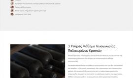 Κατασκευή ιστοσελίδων - afianes-website-2