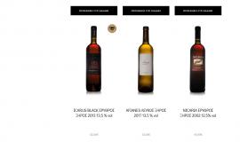 Κατασκευή ιστοσελίδων - afianes-website-5